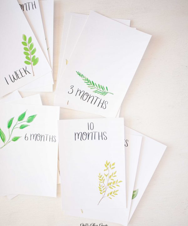 Pretty Plain Paper Greenery Monthly Milestone Photo Cards