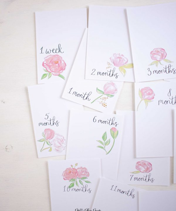 Pretty Plain Paper Pink Peonies Monthly Milestone Photo Cards Printables