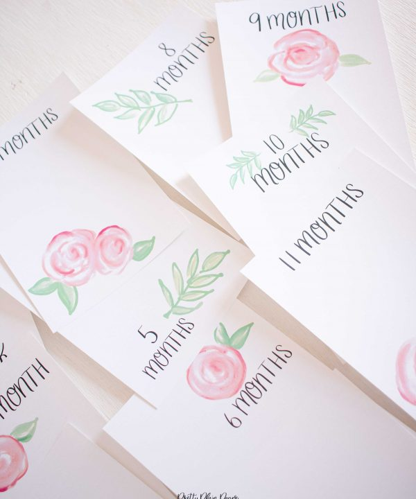 Pretty Plain Paper Pink Roses Monthly Milestone Photo Cards