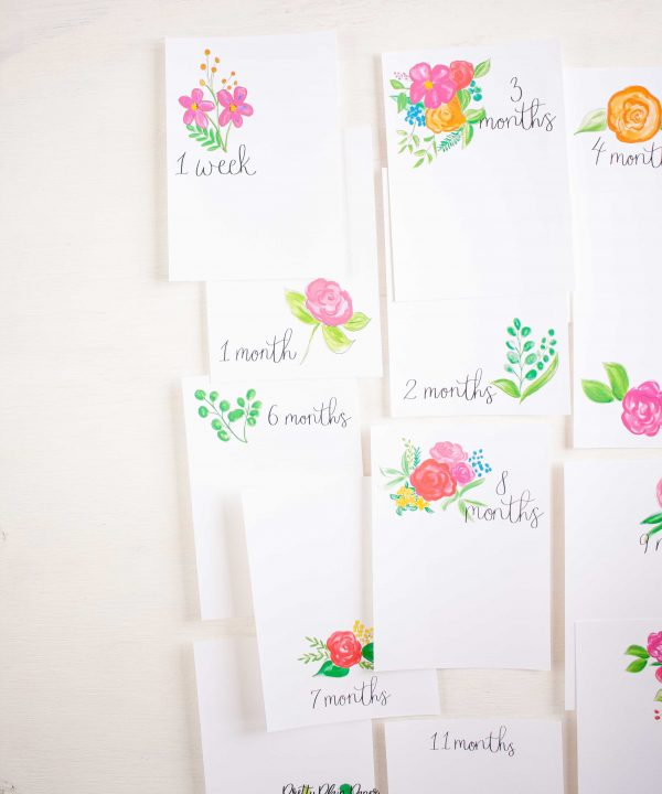 Pretty Plain Paper Rainbow Floral Monthly Milestone Photo Cards Printables