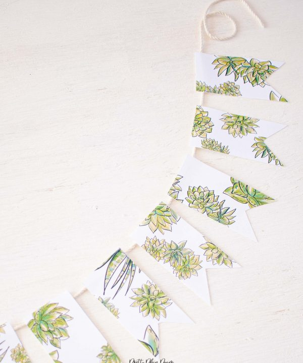 Pretty Plain Paper Succulents Banner