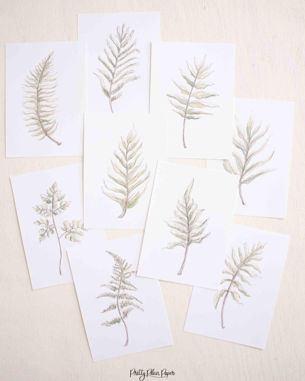 Watercolor Fern Print Set by Pretty Plain Paper Prinable Download